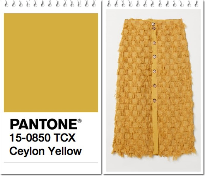 Ceylon-Yellow-otono-2019