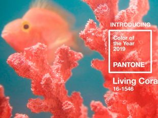 Living-coral-el-color-2019
